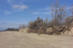 Pointe Gatseau janv 2011 2